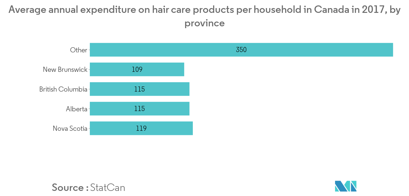canada hair care market industry2