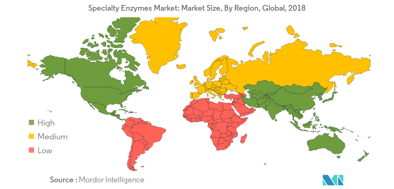 Specialty Enzymes Market12